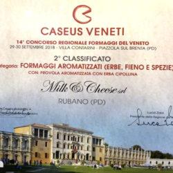 caseus_veneti